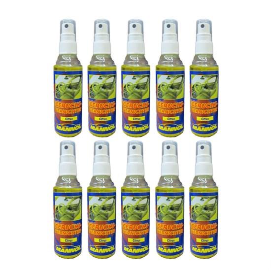 10x Geruchsvernichter Citrus 100ml