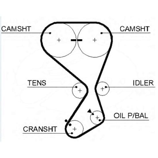 Zahnriemen / Timing Belts