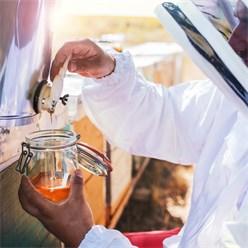 Honigschleuder silber, Ø 49 cm, aus Edelstahl