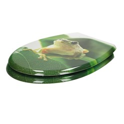 Toilettendeckel Frosch Softclose