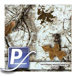 Water Transfer Printing film WTP-266 | 100cm MOTHWING-WINTER MIMICRY