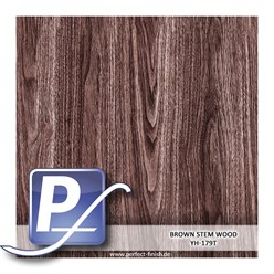 Water Transfer Compression Film YH-179T | 60cm BROWN STEM WOOD