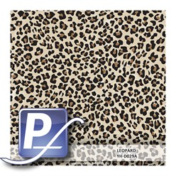 Water transfer printing film YH-D029A | 60cm LEOPARD