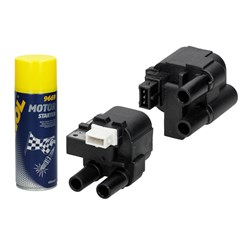 2 x Zündspule Renault + Motor Starter Spray