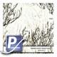 Wassertransferdruck Film WTP-247 | 80cm PRAIRIE GHOST-SNOW GHOST
