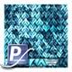 Water transfer printing film WTP 948 | 100cm VIRTUS DELOS